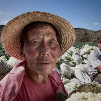 Chinese farmer